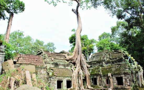 images/blog-image/destination-countries/Ta_Prohm.jpeg